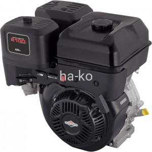 Series 2100, Briggs & Stratton 420cc, Dura bore Model 25T200