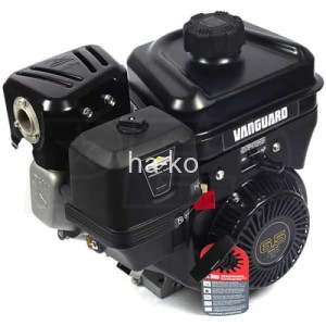 Briggs and stratton vanguard 6.5hp with 6:1 gear reduction (600 rpm)